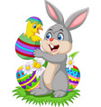 cartoon rabbit holding a baby chick hatching from vector image
