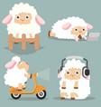 cute little sheep set vector image vector image