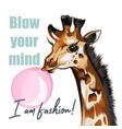 fashion giraffe blow gum vector image vector image