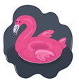 flamingo inflatable rubber circle vector image vector image