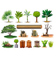 Trees and stumps vector image