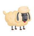 206sheep vector image