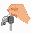 Hand holding car keys vector image