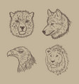 collection of animal with hand drawing vector image