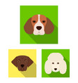dog breeds flat icons in set collection for design vector image vector image