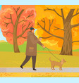 man walking dog in autumn forest park in fall vector image vector image