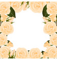 orange rose border vector image vector image