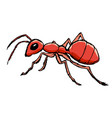 red ant from forest vector image