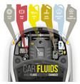 technical fluids of the car vector image vector image