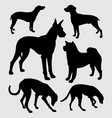 a kind dogs pet animal silhouette vector image
