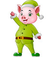 cartoon pig dressed in christmas elf costume vector image