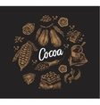set cocoa elements vector image vector image