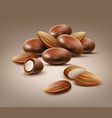 handful almond nuts vector image vector image