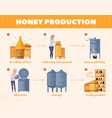 honey production process cartoon flowchart vector image