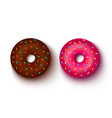 pink and chocolate donuts vector image vector image