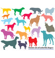 set colorful dogs silhouettes vector image vector image