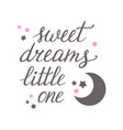sweet dreams little one vector image