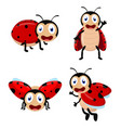 cute ladybug cartoon cartoon collection set vector image