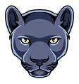 black panther head mascot logo vector image