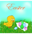 cute baby chick shows a side isolated on a white vector image vector image