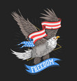 eagle usa flag freedom vector image