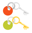 flat style of golden and metal keys vector image vector image