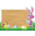 pink easter eggs sign easter bunny vector image