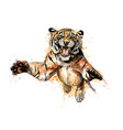 portrait a tiger jumping from a splash of vector image vector image