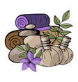 web relaxation spa massage wellness therapy vector image