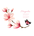 Beautiful pink magnolia branch with a butterfly vector image vector image