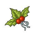 christmas mistletoe with ribbon vintage vector image
