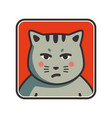 cute sad grumpy cat icon cat avatar vector image vector image