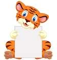 Cute tiger cartoon holding blank sign vector image vector image