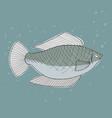 gray fish in the sea vector image