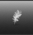 single fluffy white feather falling or hovering vector image vector image