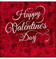 Valentines day lettering on roses EPS 10 vector image