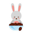 cute rabbit with bowl chocolate sweet bonbon vector image vector image
