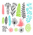 floral set with flowers and leaves vector image vector image