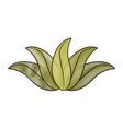 green leaves tropical natural foliage image vector image