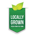 Locally Grown ribbon with leaf vector image vector image