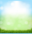 nature green background with bokeh and grass vector image vector image