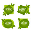 nature product organic green leaves emblems vector image vector image