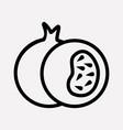 pomegranate icon line element vector image