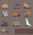 set of flat geometric species of australia vector image