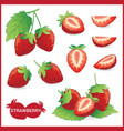 set of strawberry fruit with leaf in slice half vector image