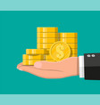stacks gold coins in hand vector image vector image