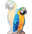 tropical triangular blue macaw parrot on a rock vector image vector image