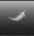 white bird feather isolated on transparent vector image vector image
