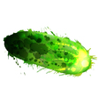 Cucumber made of colorful splashes on whit vector image