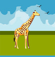 giraffe on nature background vector image